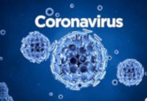 Coronavirus / Covid-19 Lo que se sabe